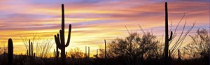 arizona-sunset-small image | Arizona Office